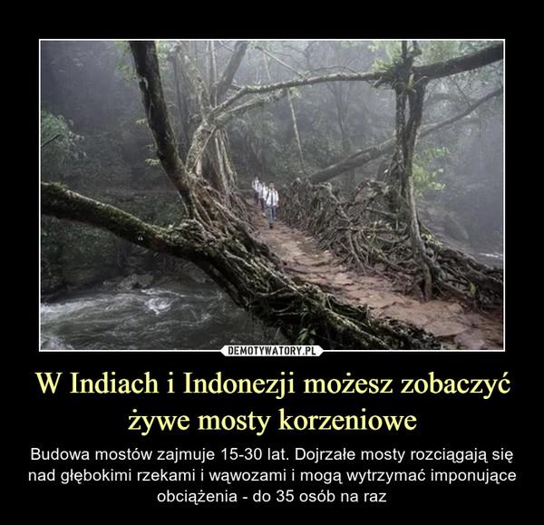 [Obrazek: 1610347679_lvogzs_600.jpg]