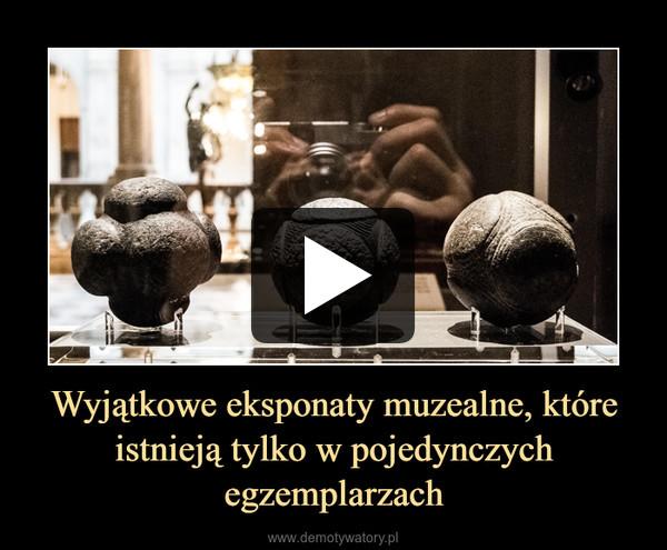 Wyjątkowe eksponaty muzealne, które istnieją tylko w pojedynczych egzemplarzach –