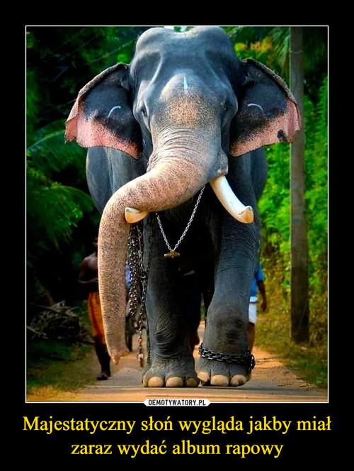 Majestatyczny słoń wygląda jakby miał zaraz wydać album rapowy
