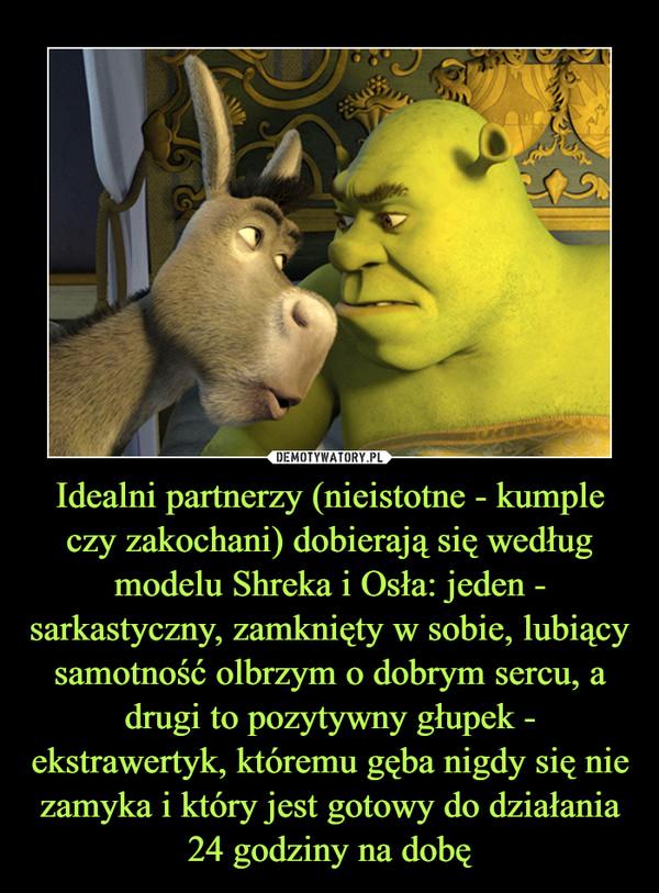 Idealni partnerzy (nieistotne - kumple czy zakochani) dobierają się według modelu Shreka i Osła: jeden - sarkastyczny, zamknięty w sobie, lubiący samotność olbrzym o dobrym sercu, a drugi to pozytywny głupek - ekstrawertyk, któremu gęba nigdy się nie zamyka i który jest gotowy do działania 24 godziny na dobę –