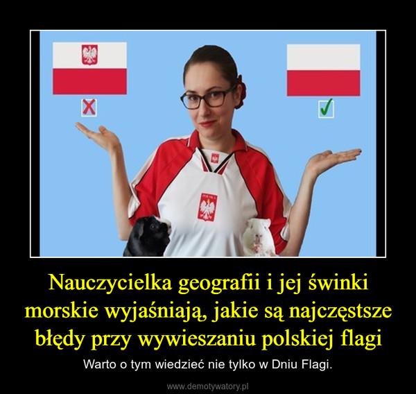 Nauczycielka geografii i jej świnki morskie wyjaśniają, jakie są najczęstsze błędy przy wywieszaniu polskiej flagi – Warto o tym wiedzieć nie tylko w Dniu Flagi.