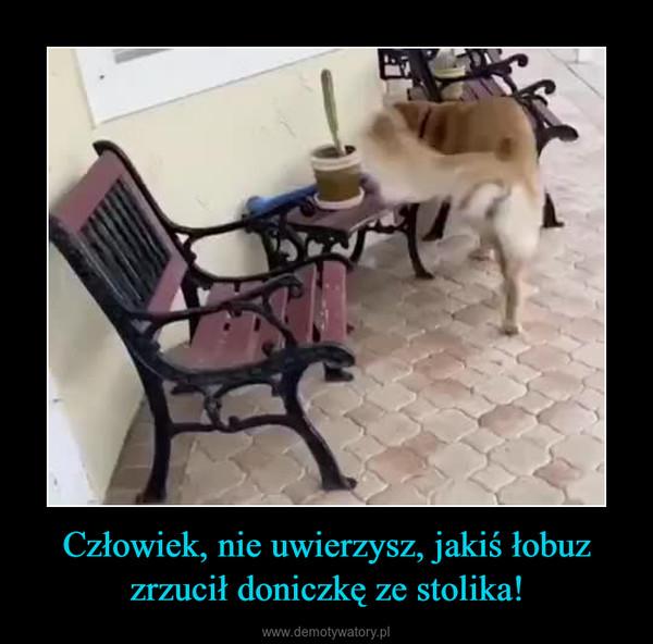 Człowiek, nie uwierzysz, jakiś łobuz zrzucił doniczkę ze stolika! –
