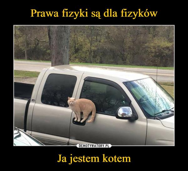 1550574849_tulmok_600.jpg